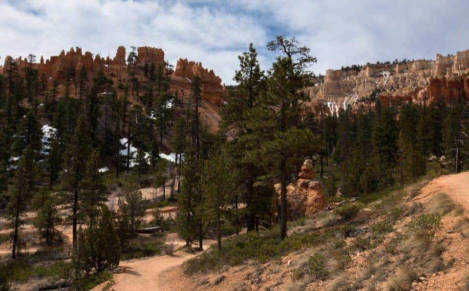 Canyon bottom along the Navajo Loop trail at Bryce Canyon National Park, Utah, USA