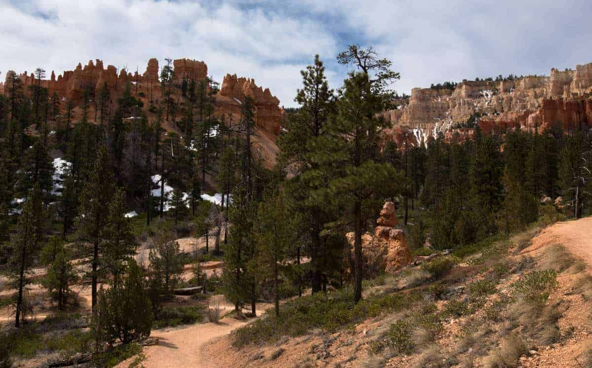 Beautiful landscape along the canyon floor at Bryce Canyon.