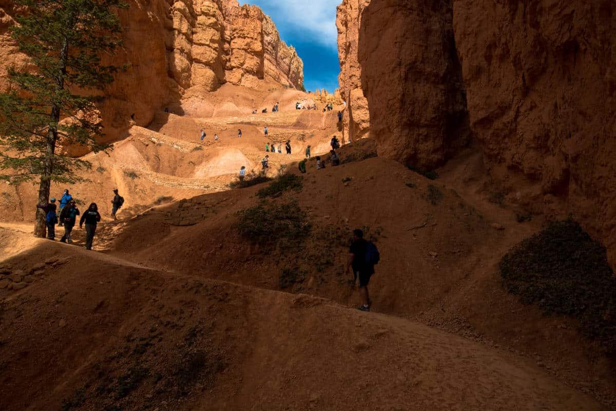 The steep switchbacks along the Navajo Loop hiking trail at Bryce Canyon.