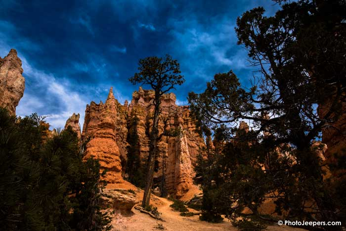 The Navajo Loop-Queen's Garden Trail in Bryce Canyon National Park is a beautiful 3 mile hike. It's Bryce Canyon National Park's most popular hike and we definitely know why! Check out our guide to hiking Navajo Loop – Queen's Garden Trail including safety tips and photography tips during your hike. You'll want to save this to your hiking or travel board.