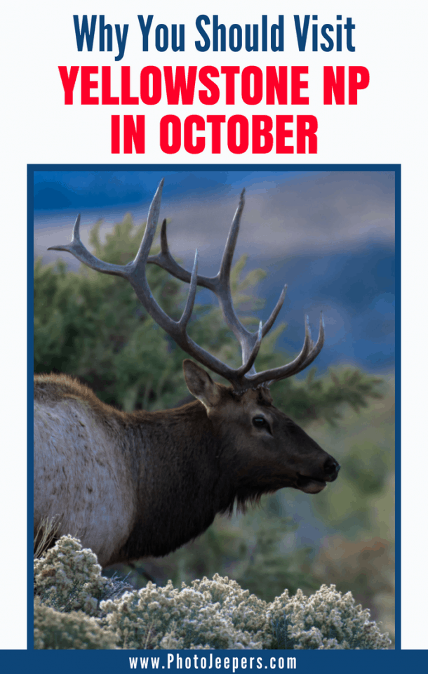 Why you should visit Yellowstone National Park in October
