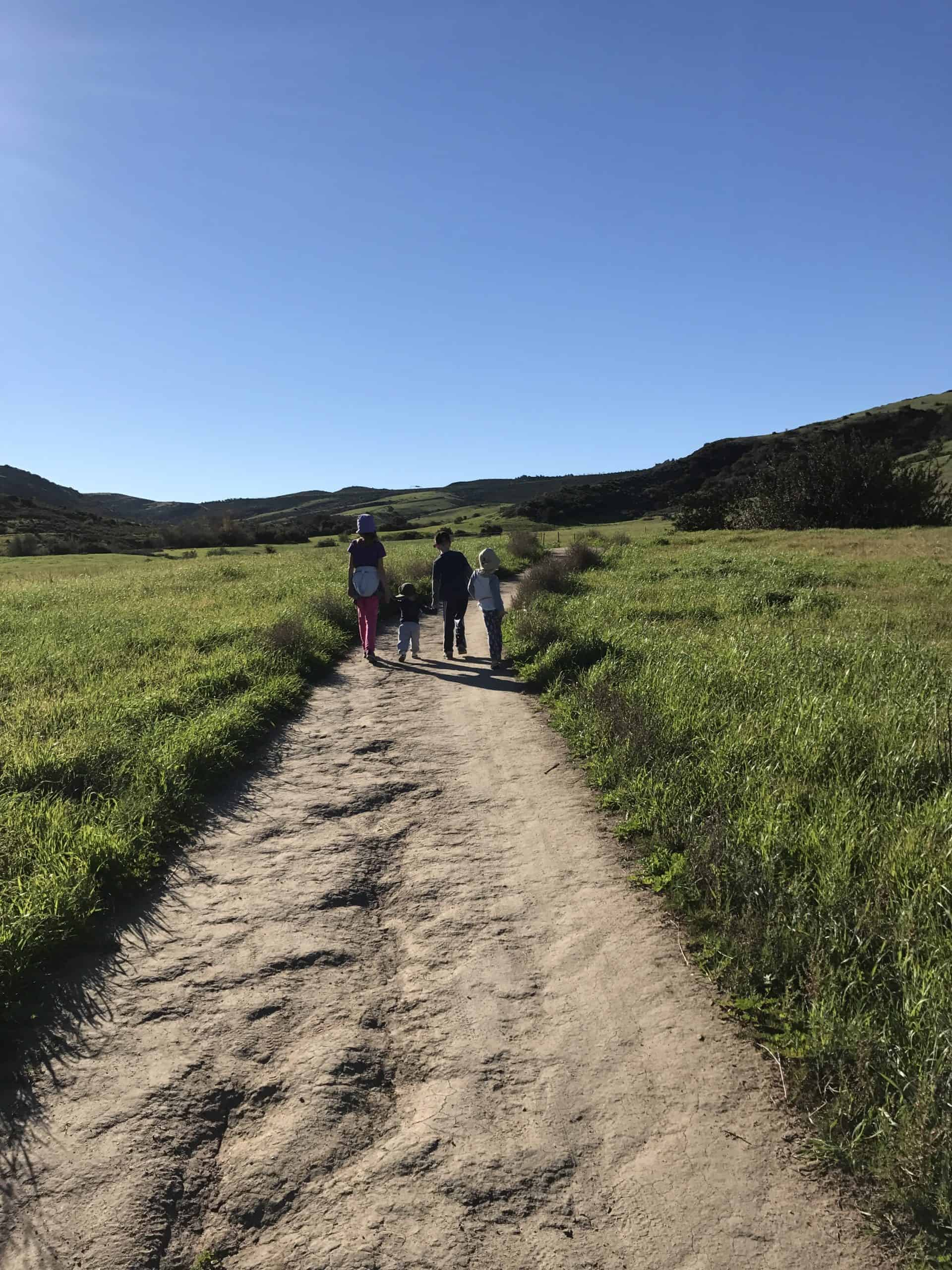 Find trails close to home when hiking with kids.