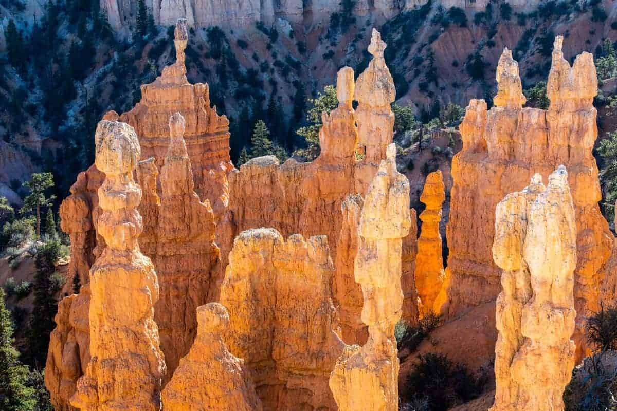 The glow of morning light on the hoodoos at Fairyland Point, Bryce Canyon.