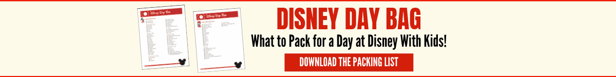 Disney Day Bag - download the packing list