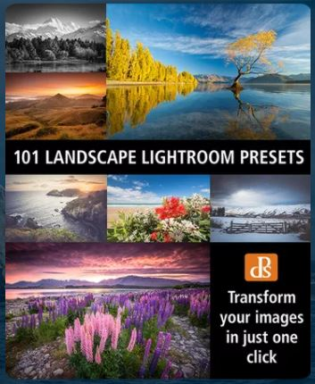 This is not your typical How To Use Lightroom article. These 5 photo editing tips will allow you to decide if Lightroom is the right program for you: Photo Organization and Selection; Photo Color, Mood Creation and Presets; Brush Correction; Create HDR and Panoramic Images; and Repair Tools. You'll definitely want to read this article and save it to your photography tips board.