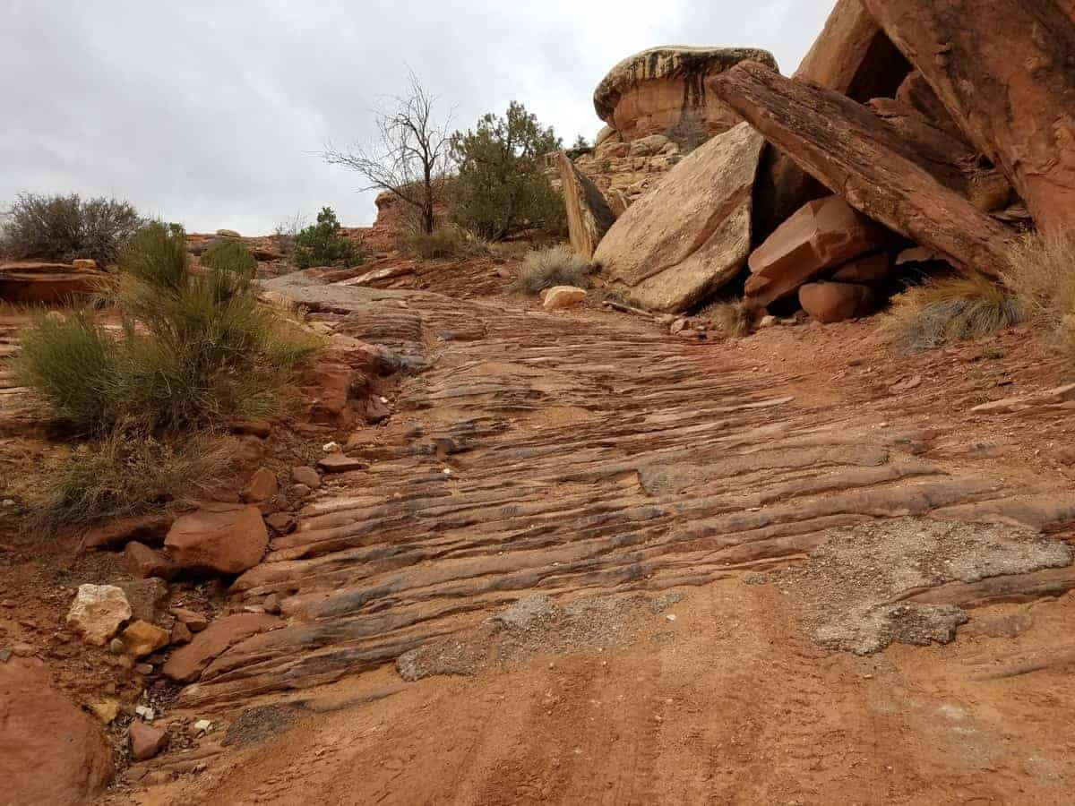 The 4x4 Elephant Hill offroad trail has tricky sections to navigate.