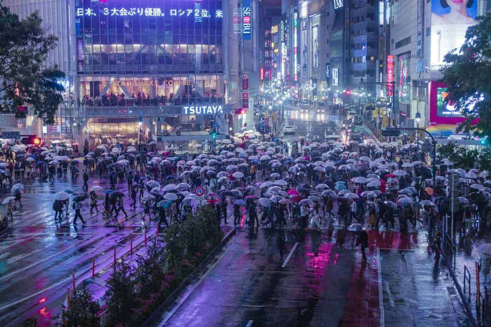Street in Japan at night - pedestrians holding umbrellas