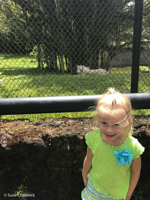 girl at zoo - Big Island of Hawaii with kids.