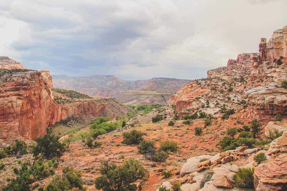 Capitol Reef Hikes - view from Hickman Bridge