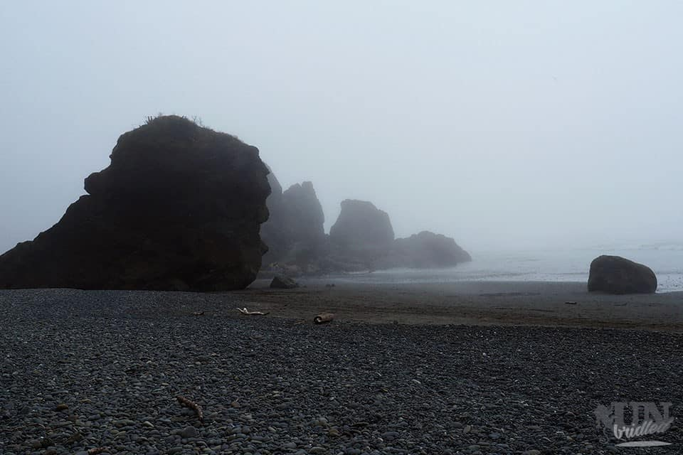 Foggy beach at Olympic National Park - US National Park List: 25 Beautiful Parks to Visit