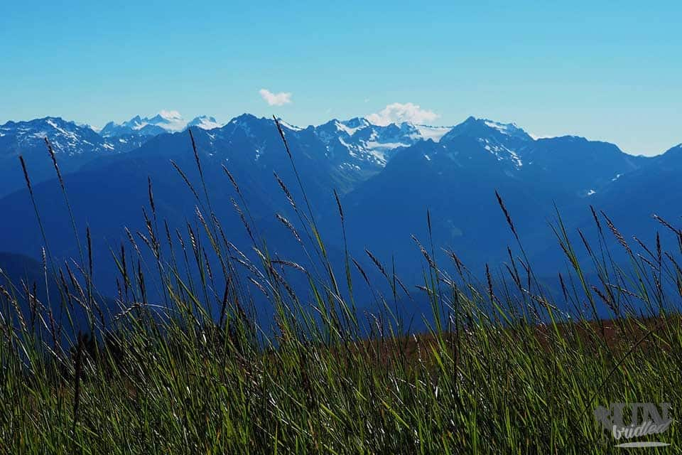 Mountain views at Olympic National Park - US National Park List: 25 Beautiful Parks to Visit