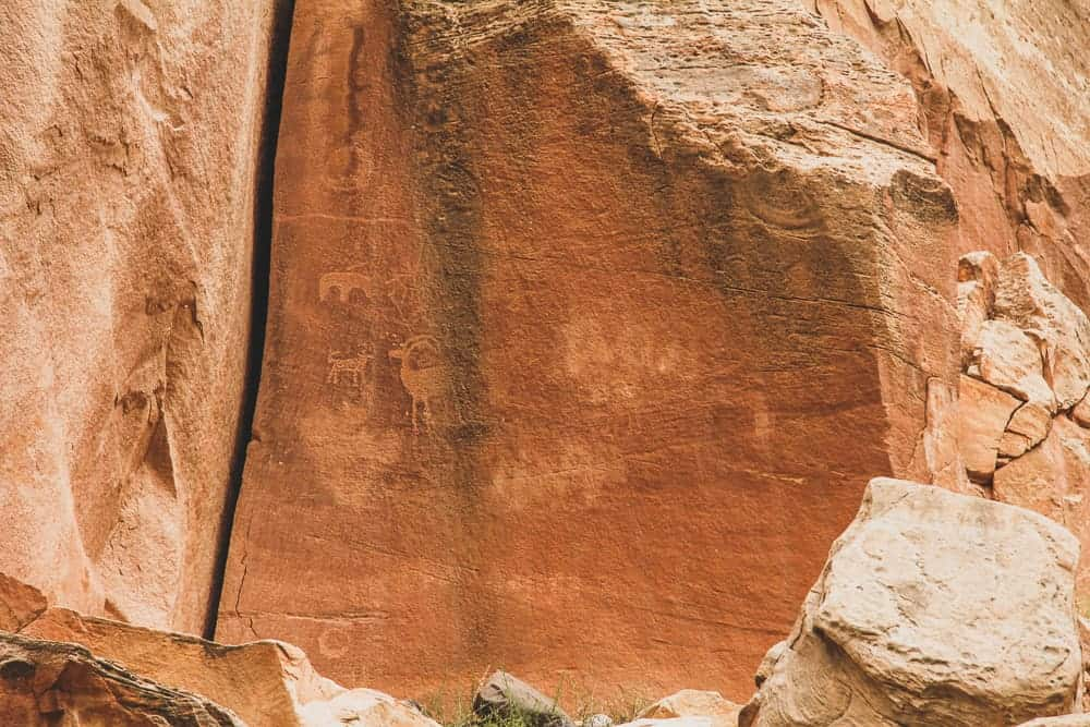 Capitol Reef hikes - Capitol Gorge Wash petroglyphs