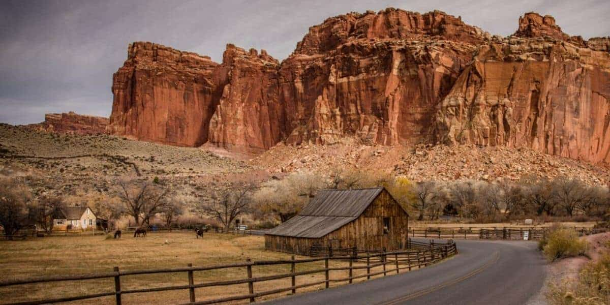 The fruita district at Capitol Reef National Park.