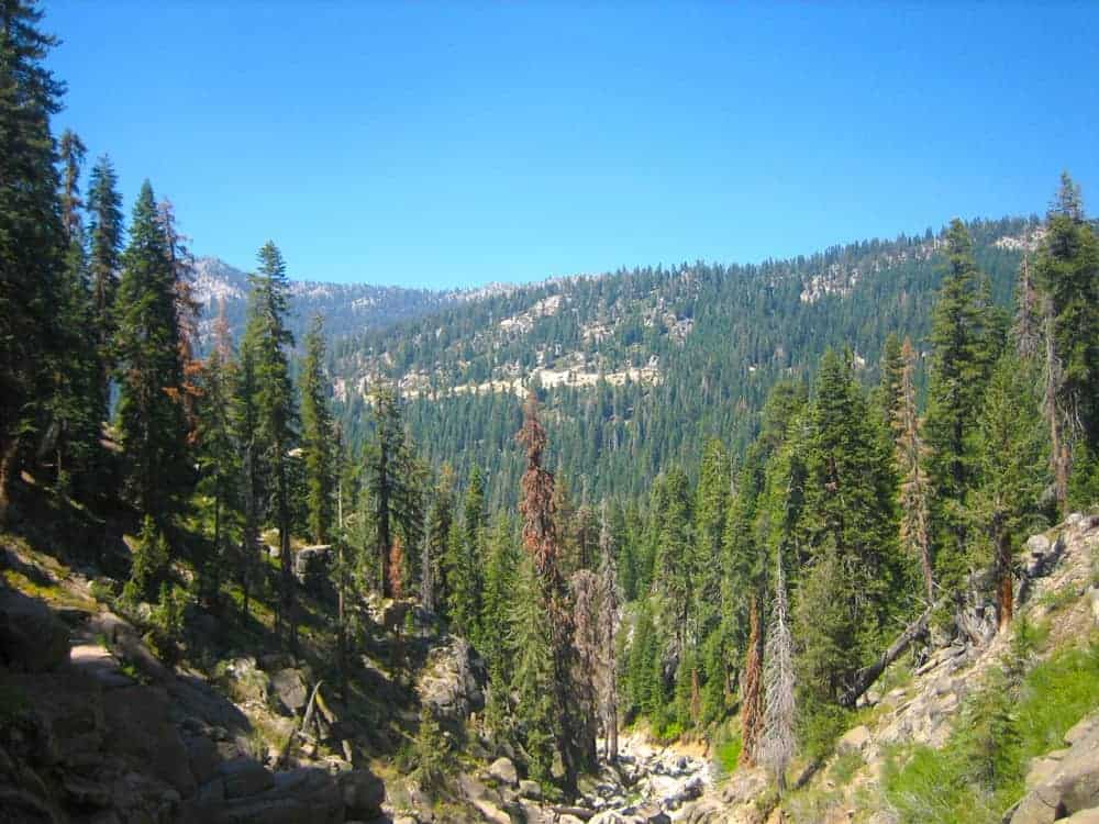 Kings Canyon National Park - US National Park List: 25 Beautiful Parks to Visit
