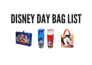 Disney day bag list