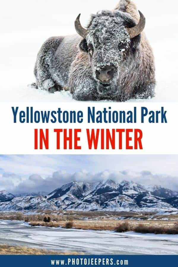 Looking for a unique national park experience? Visit Yellowstone in the winter. Use our guide to plan your trip: where to stay, what to do and what to pack! #nationalparks #yellowstone #yellowstonenationalpark #winter #photojeepers