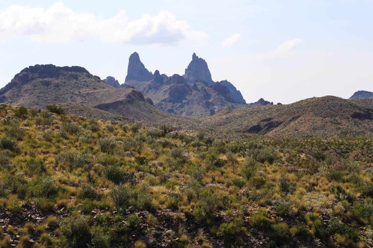 Big Bend landscape in the spring