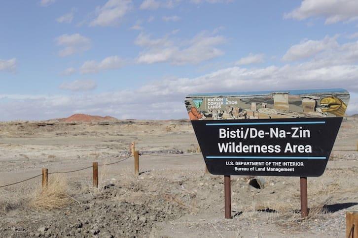 New Mexico: Bisti Badlands, Ice Cave & Bandera Volcano, Las Cruces