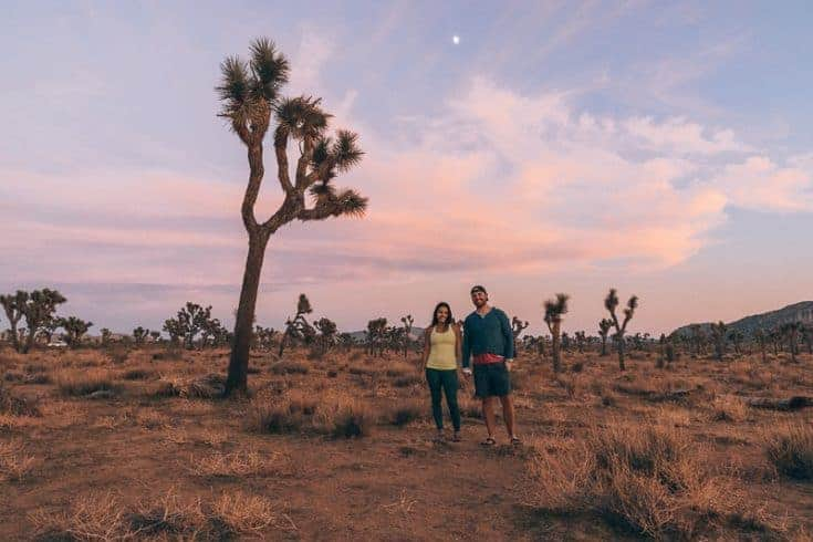 The 10 Best Things To Do In Joshua Tree National Park