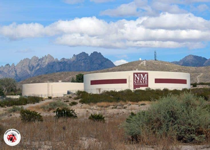 A Guide to the Las Cruces Water Tank Murals in New Mexico (Map Included)