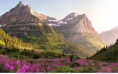 Plan a Fantastic Summer Vacation to US National Parks in June