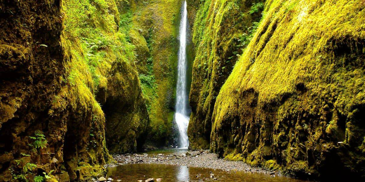 Summer is the ideal time to visit Oneonta Gorge.