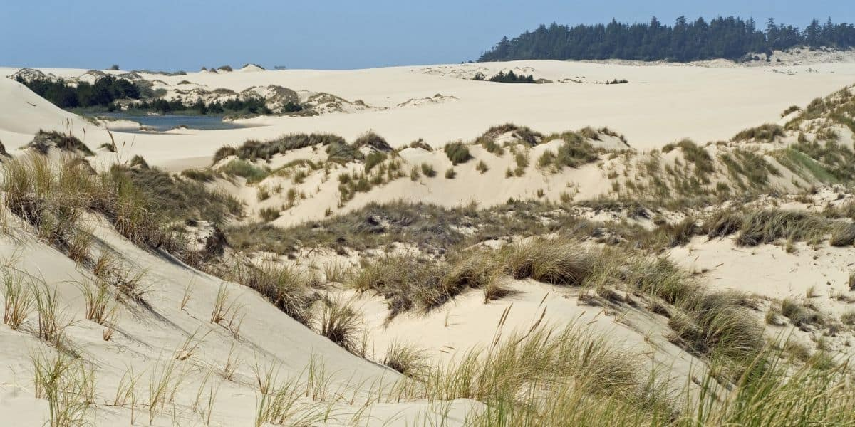 Enjoy outdoor adventure at Oregon Dunes National Recreation Area
