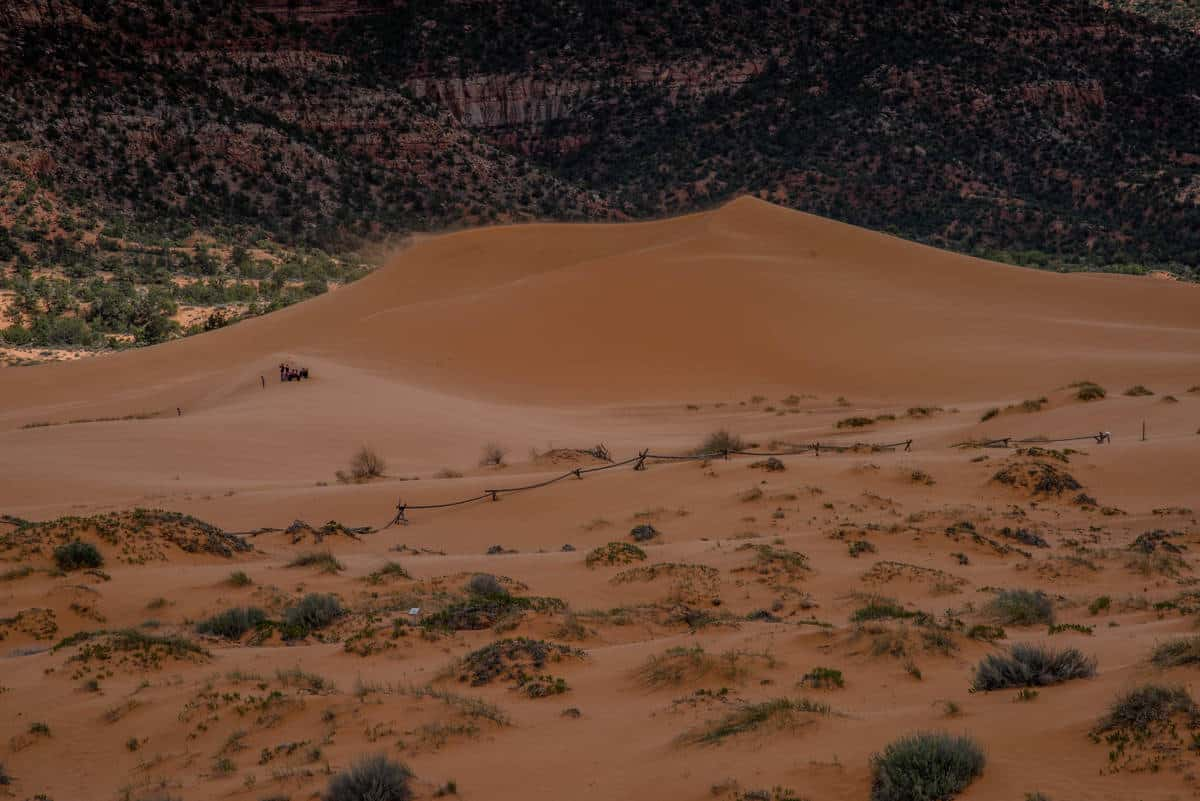 Coral Pink Sand Dunes is a fun Utah State Park to explore.