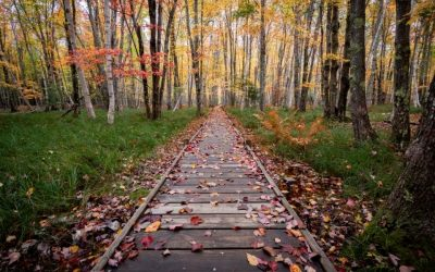 The Best Fall Hikes at US National Parks