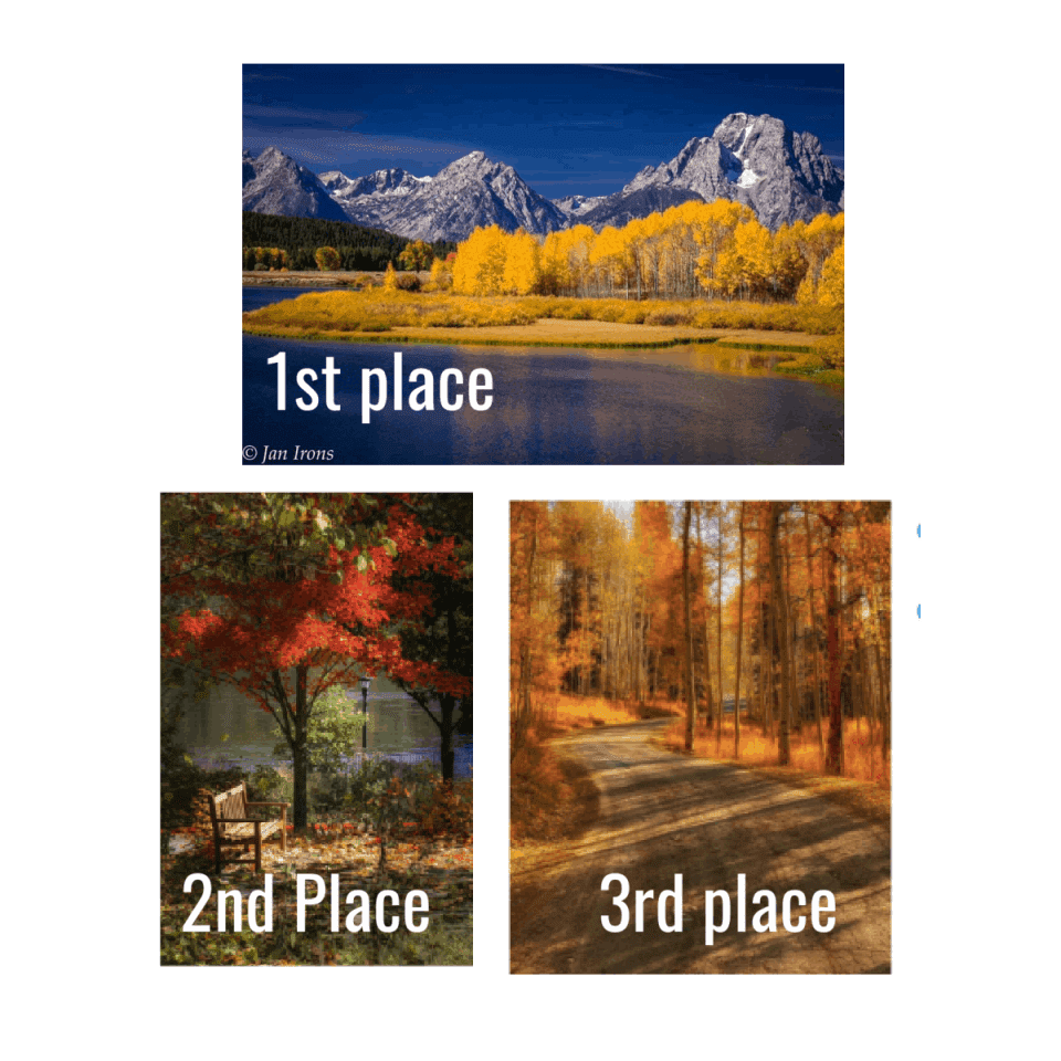 Fall photo event winners