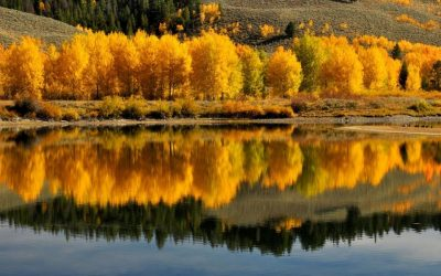 The Best Fall Hiking in the US