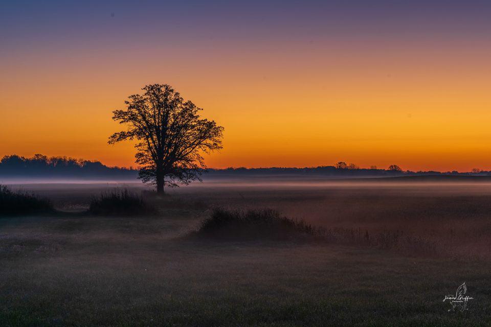 centered horizon for landscape photography