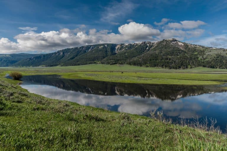 Yellowstone Vacation Ideas
