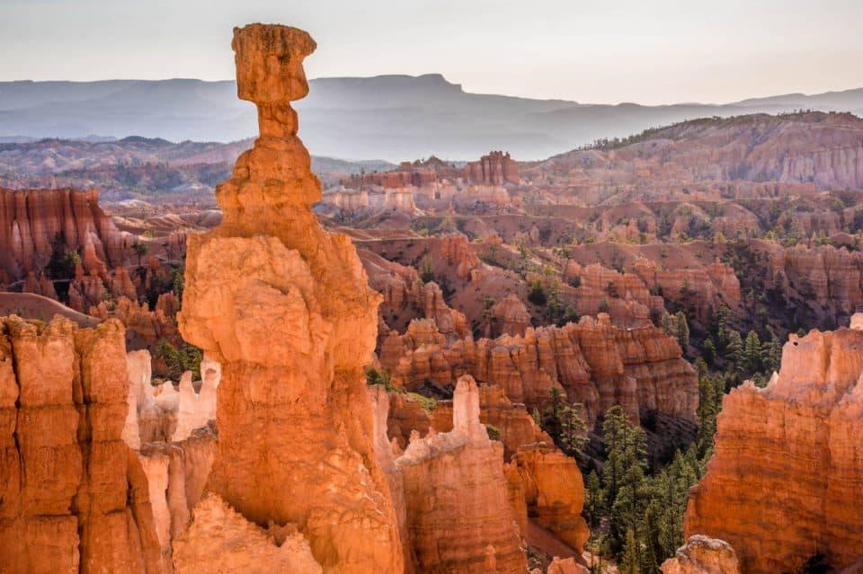 Bryce Canyon foreground midground background