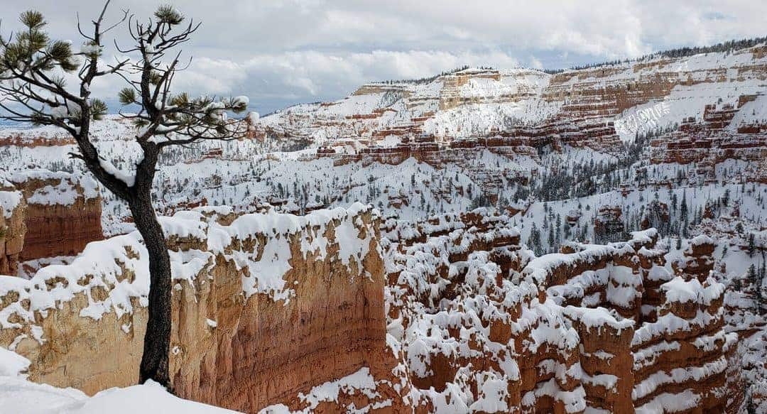 Bryce Canyon National Park in January