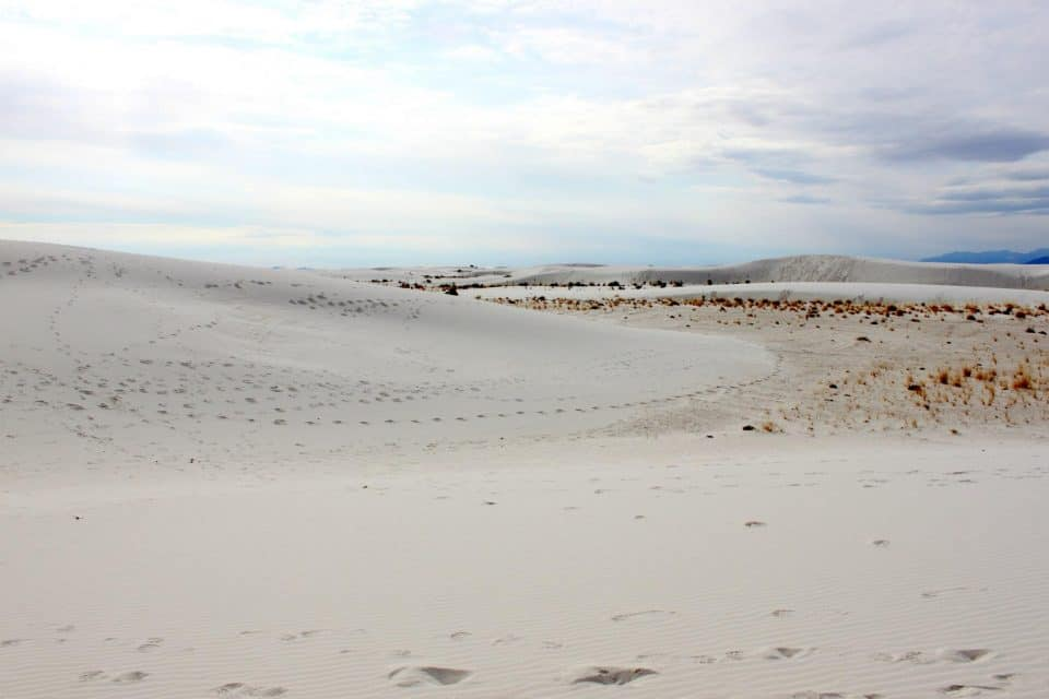 White Sands National Park in March