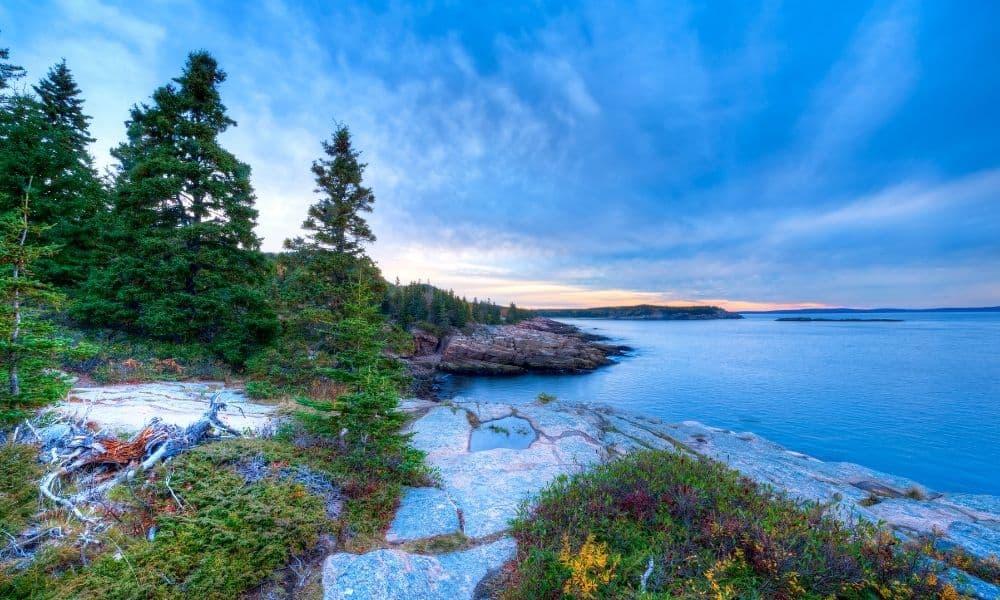 Acadia National Park in June