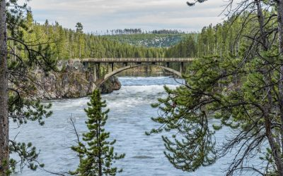 Plan a Fun Yellowstone Summer Vacation