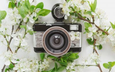 Spring Landscape Photography Gear List
