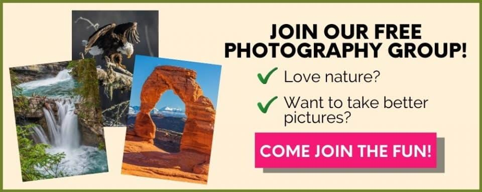 join free photography group