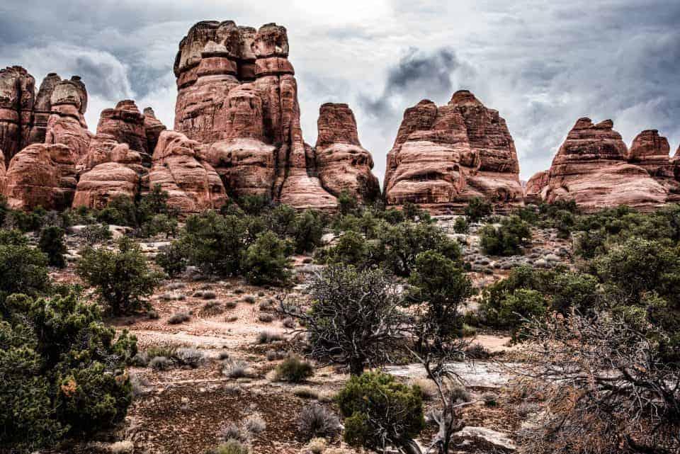 Canyonlands Needles spires