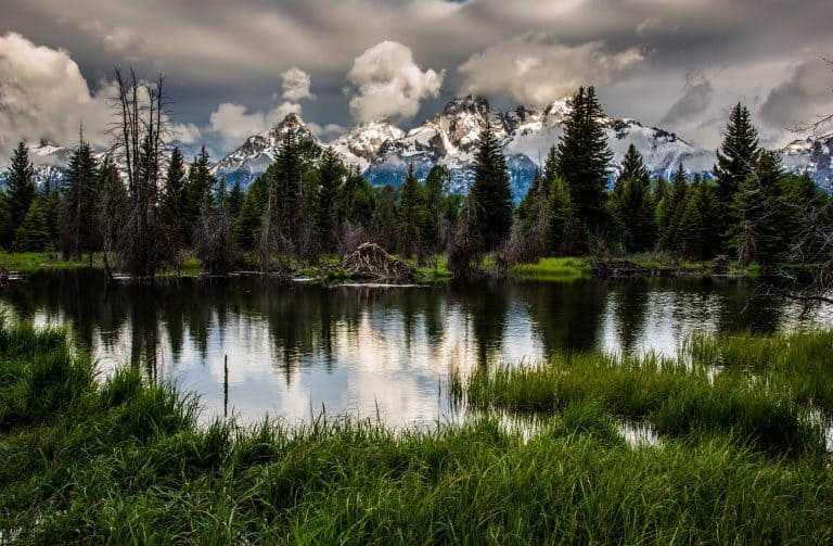 Visiting Grand Teton National Park in the Spring