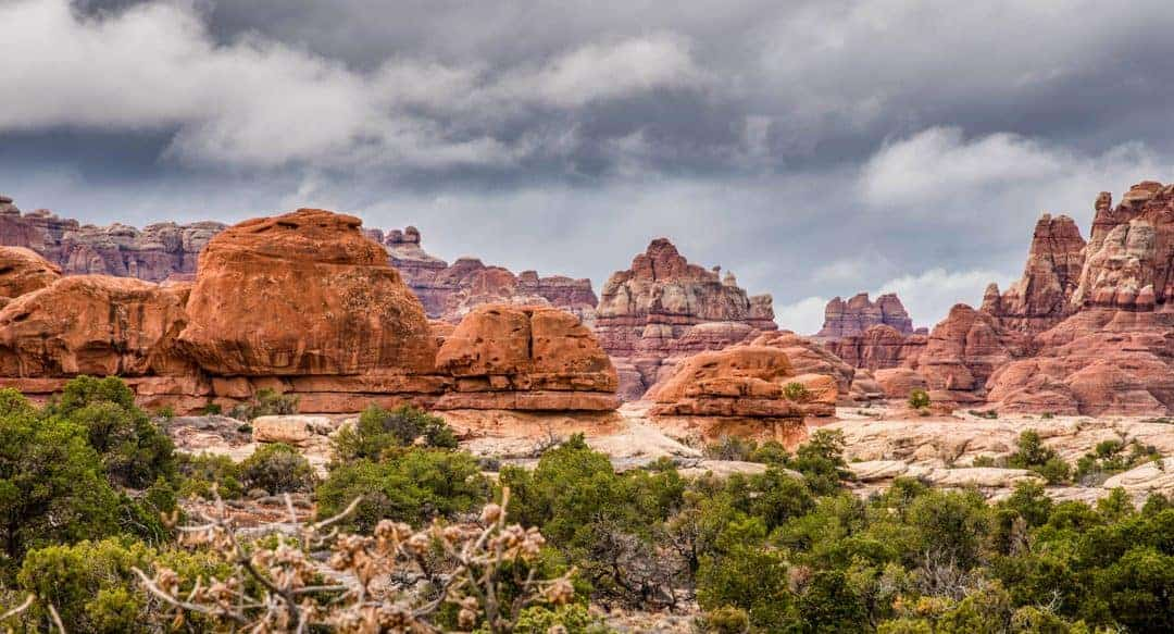 Needles Canyonlands spires