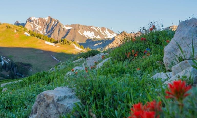 10 Utah Summer Vacation Ideas