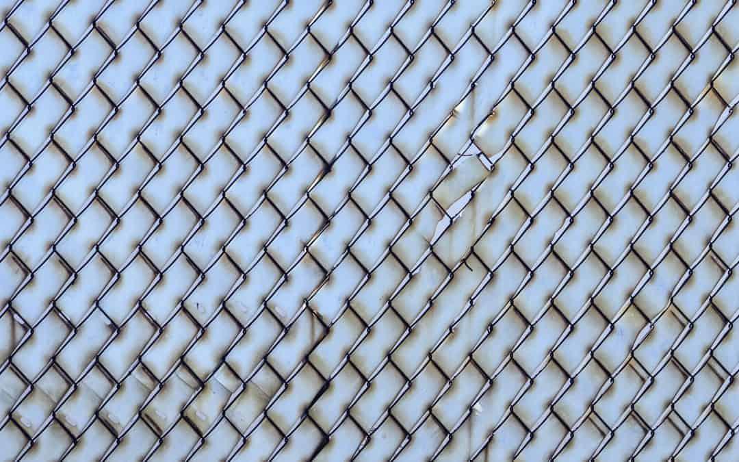 regular fence pattern - Lissa Evans