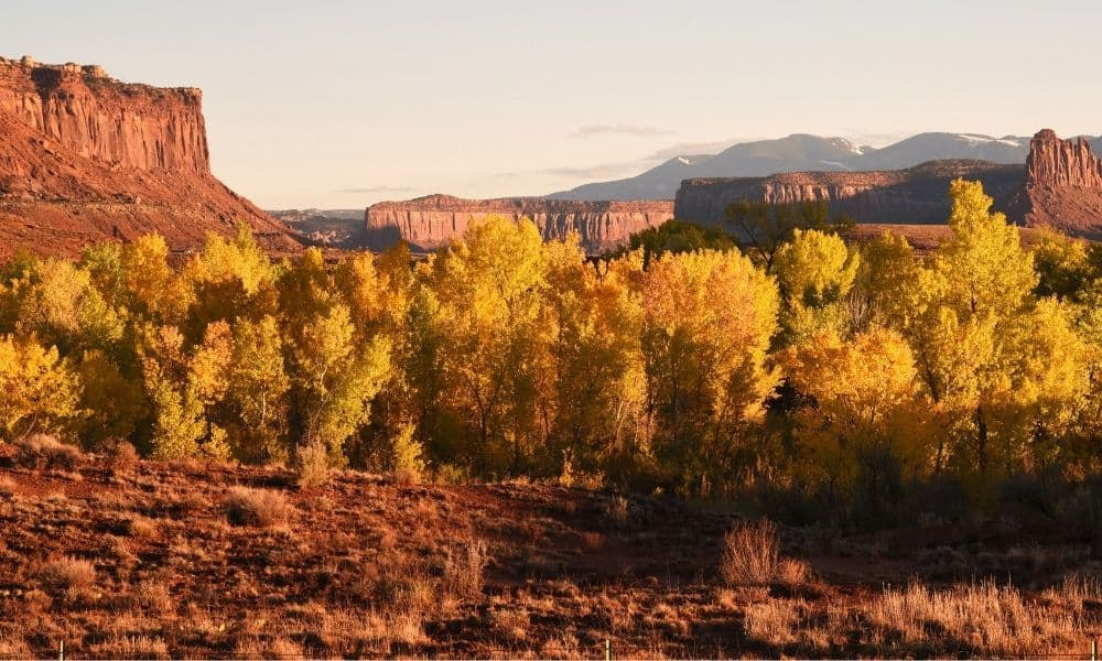 Visiting Canyonlands National Park in the Fall