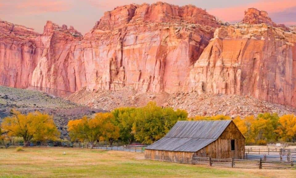 Fruita at Capitol Reef in the fall